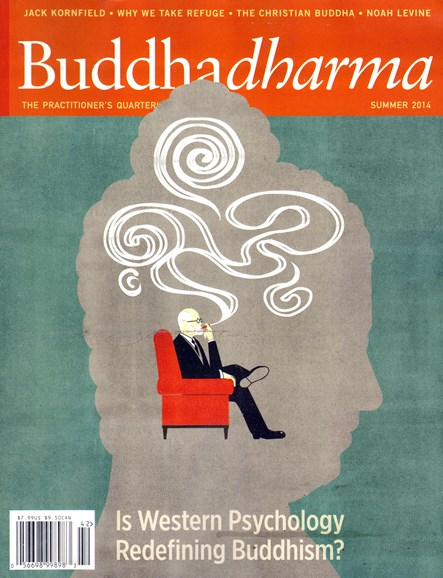 BUDDHADHARMA: THE PRACTIONER'S QUARTERLY Cover - 6/1/2014