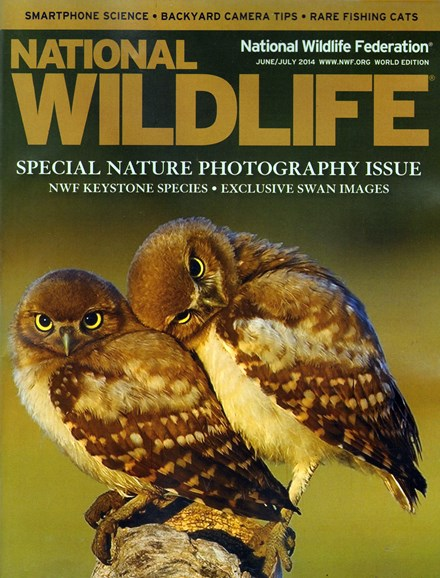 National Wildlife Cover - 6/1/2014
