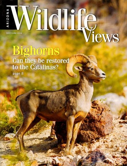 Arizona Wildlife Views Cover - 5/1/2014