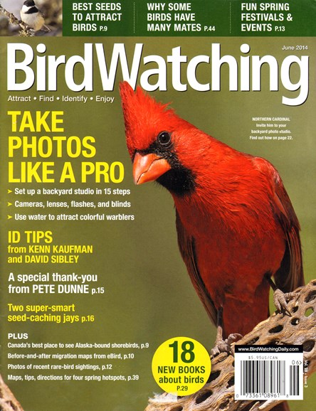 Bird Watching Cover - 6/1/2014