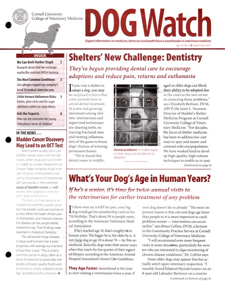 Dogwatch Cover - 9/1/2014