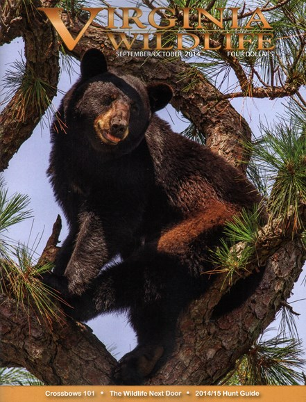 Virginia Wildlife Cover - 9/1/2014