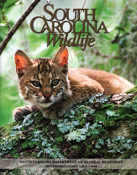 South Carolina Wildlife Cover - 9/1/2014