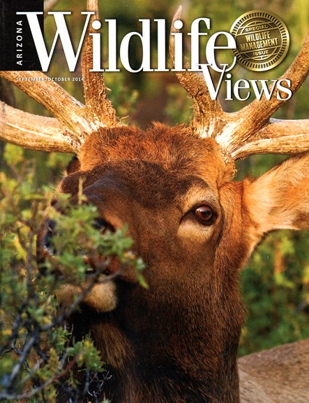 Arizona Wildlife Views Cover - 9/1/2014