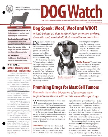 Dogwatch Cover - 10/1/2014