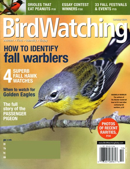 Bird Watching Cover - 10/1/2014