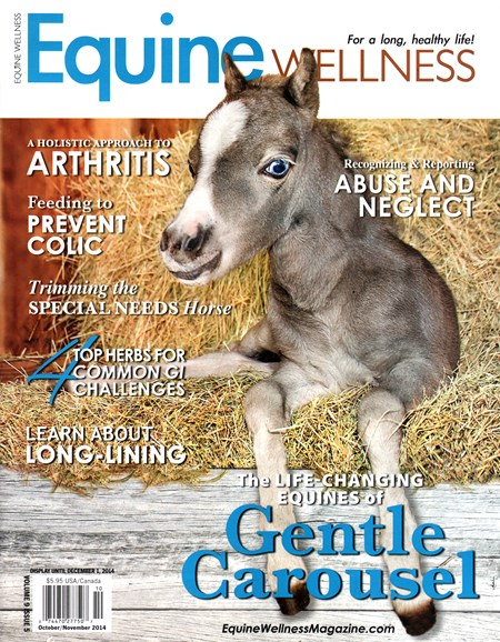 Equine Wellness Cover - 10/1/2014