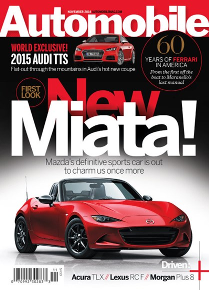 Automobile Cover - 11/1/2014