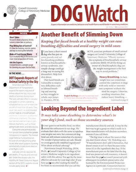 Dogwatch Cover - 11/1/2014