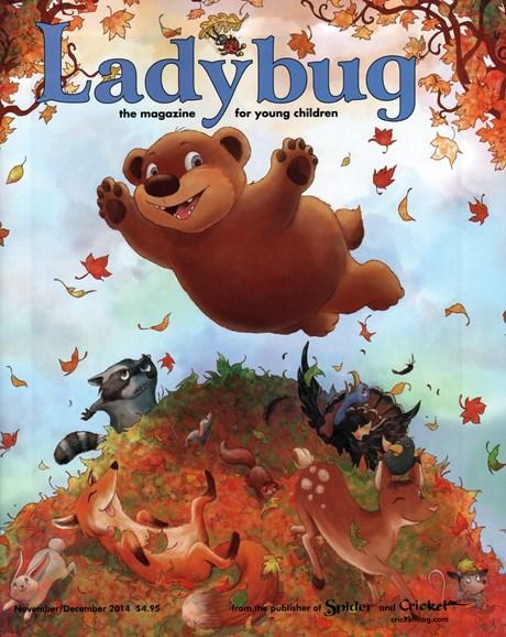 Ladybug Cover - 11/1/2014