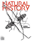 Natural History Magazine 11/1/2014