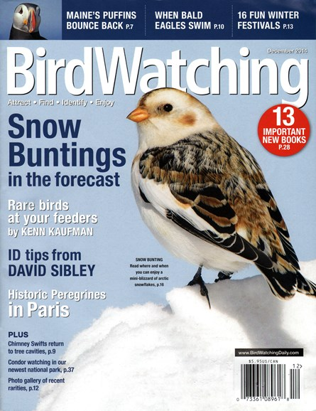 Bird Watching Cover - 12/1/2014