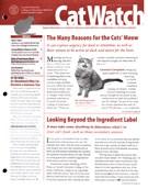 Catwatch Magazine 12/1/2014