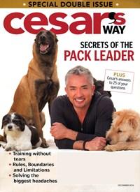 Cesar's Way Magazine | 12/1/2014 Cover