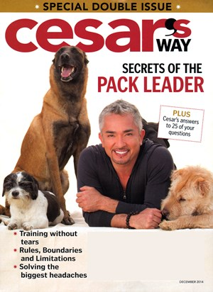 Cesar's Way Magazine | 12/1/2014 Cover