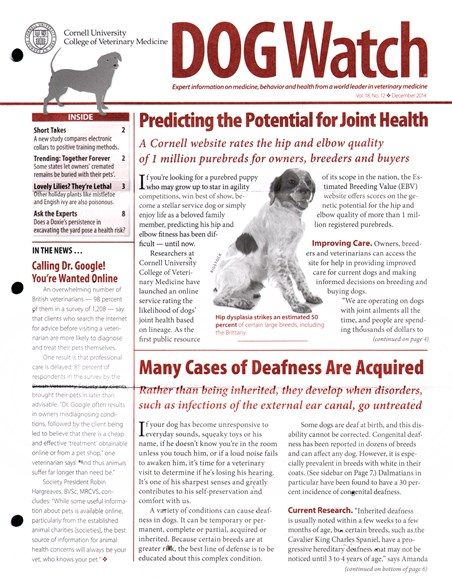 Dogwatch Cover - 12/1/2014