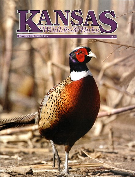 Kansas Wildlife & Parks Cover - 11/1/2014