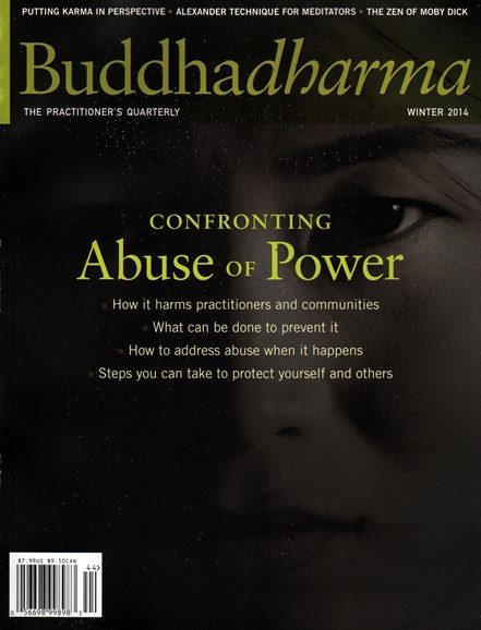 BUDDHADHARMA: THE PRACTIONER'S QUARTERLY Cover - 12/1/2014