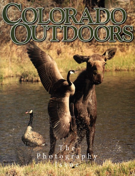Colorado Outdoors Cover - 11/1/2014