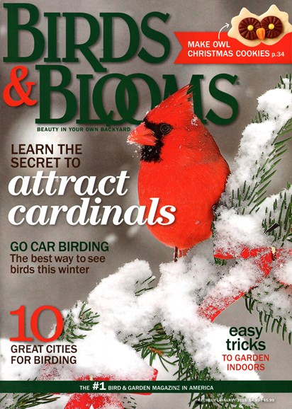 Birds & Blooms Cover - 12/1/2014