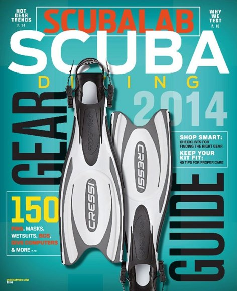 Scuba Diving Cover - 2/1/2014