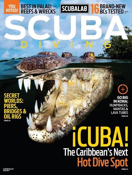 Scuba Diving Cover - 6/1/2014