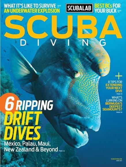 Scuba Diving Cover - 6/1/2013