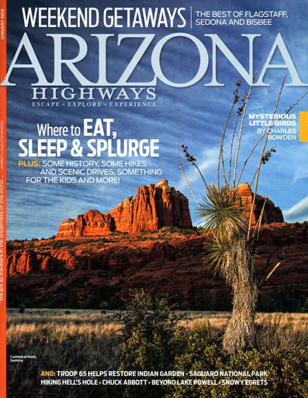 Arizona Highways Cover - 1/1/2015