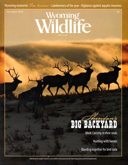 Wyoming Wildlife Cover - 12/1/2014