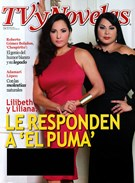 Tv Y Novelas Magazine 1/1/2015