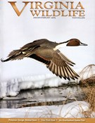 Virginia Wildlife Magazine 1/1/2015