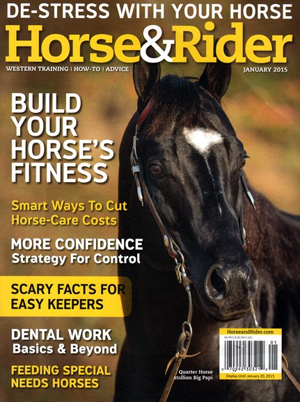 Horse & Rider Cover - 1/1/2015