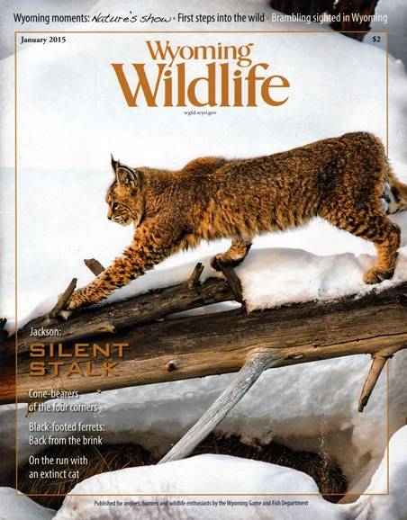 Wyoming Wildlife Cover - 1/1/2015