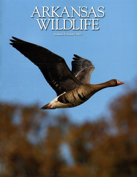 Arkansas Wildlife Cover - 1/1/2015