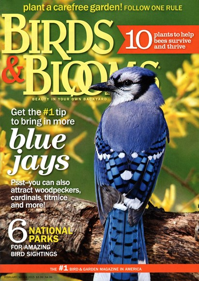 Birds & Blooms Cover - 2/1/2015
