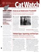 Catwatch Magazine 3/1/2015