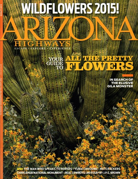 Arizona Highways Cover - 3/1/2015
