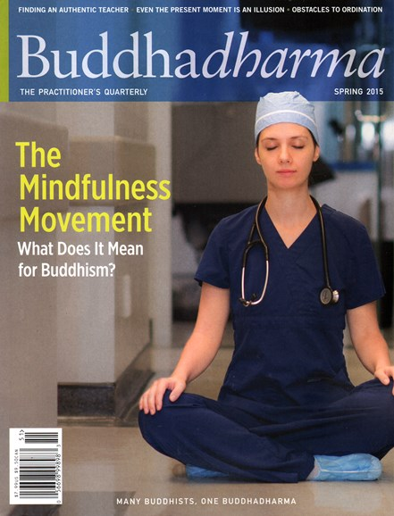 BUDDHADHARMA: THE PRACTIONER'S QUARTERLY Cover - 3/1/2015