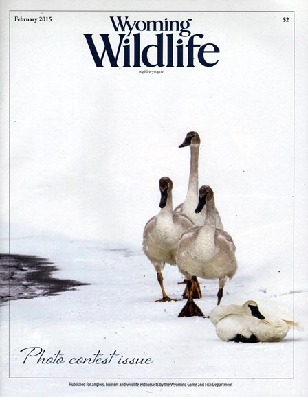 Wyoming Wildlife Cover - 2/1/2015
