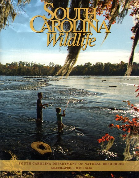 South Carolina Wildlife Cover - 3/1/2015