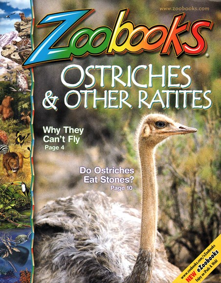 Zoobooks Cover - 2/1/2015