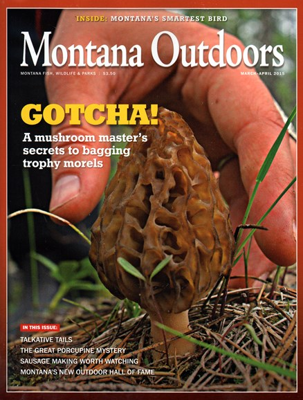 Montana Outdoors Cover - 3/1/2015
