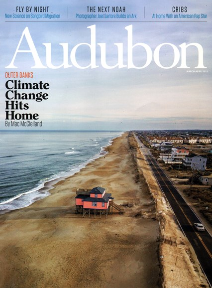 Audubon Cover - 3/1/2015