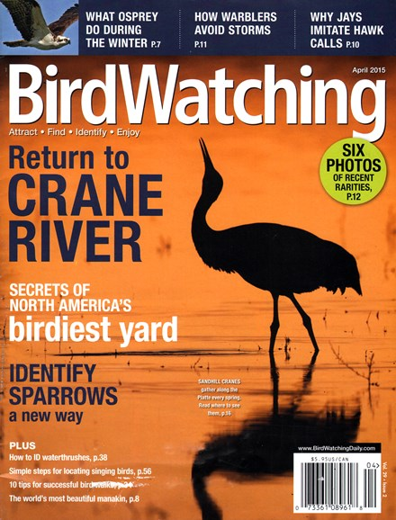 Bird Watching Cover - 4/1/2015