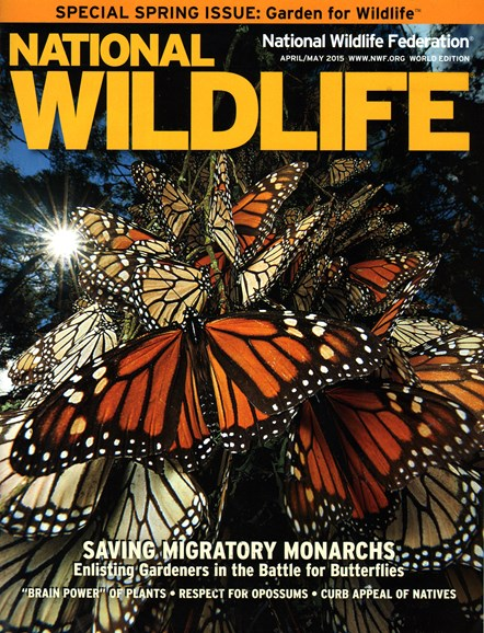 National Wildlife Cover - 4/1/2015