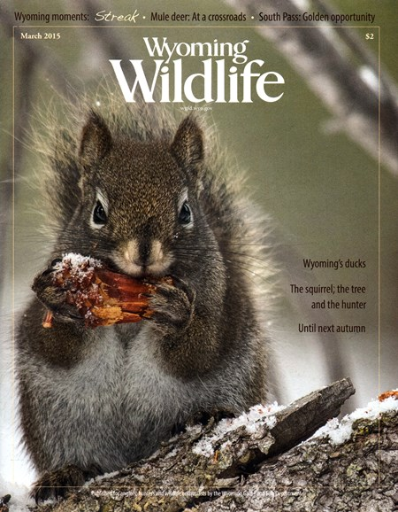 Wyoming Wildlife Cover - 3/1/2015