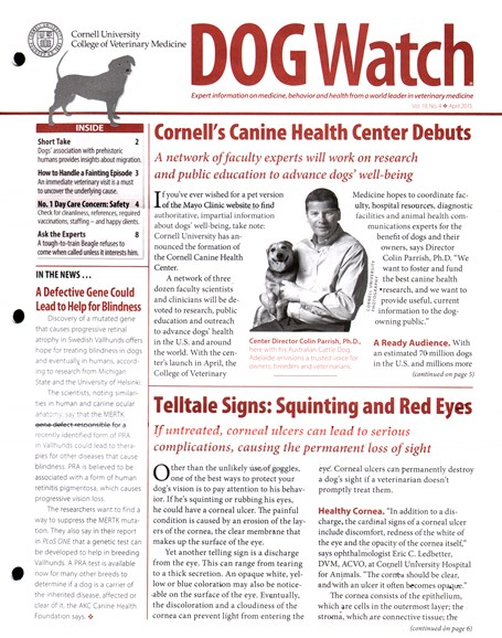 Dogwatch Cover - 4/1/2015