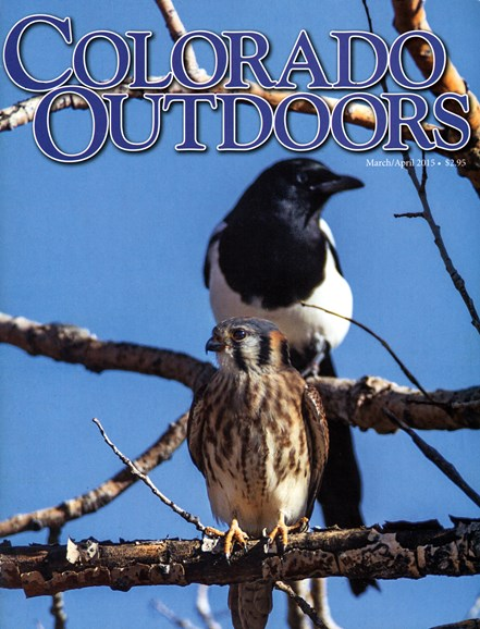 Colorado Outdoors Cover - 3/1/2015