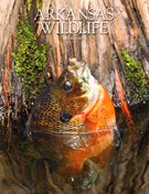 Arkansas Wildlife Magazine 5/1/2015