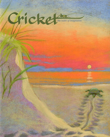 Cricket Cover - 5/1/2015